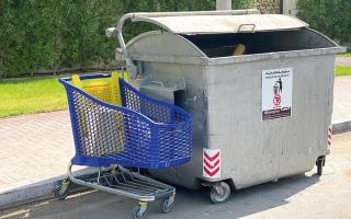 الصورة: لقطة.. عربات التسوّق
