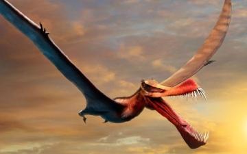 """الصورة: علماء: """"التنين الطائر"""" كان يجوب الأرض جنوباً وشمالاً"""