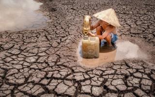الصورة: الصور الفائزة بمسابقة صور اليوم العالمي للعمل الإنساني لعام 2021