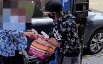 الصورة: لص يعتدي على امرأة ويسرق حقيبتها.. فيديو