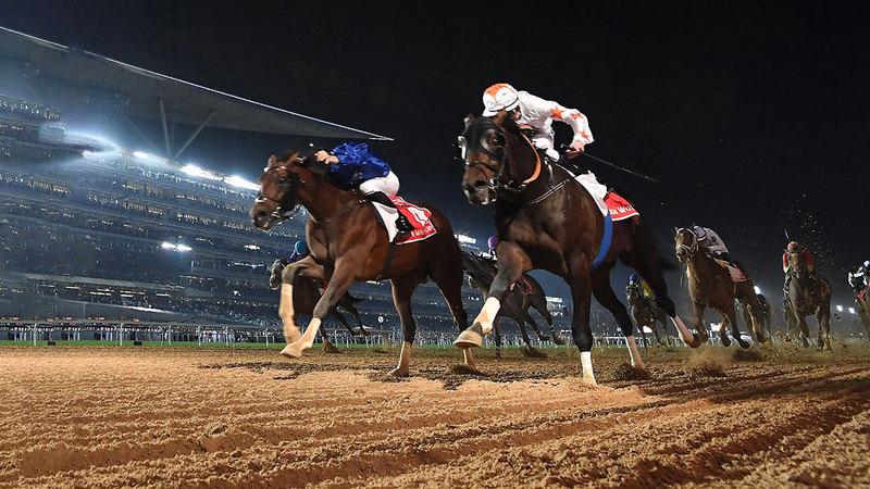 من منافسات سابقة لكأس دبي العالمي.  تصوير: أسامة أبوغانم