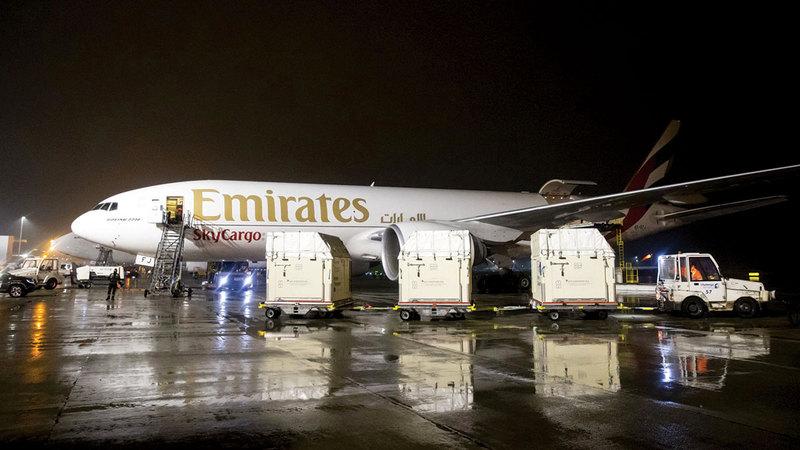 «طيران الإمارات» من الشركات العالمية الرائدة في نقل الخيول جواً للأحداث الرياضية.  من المصدر