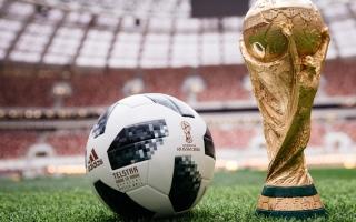 """الصورة: """"فيفا"""": غالبية مشجعي كرة القدم يرحبون بإقامة المونديال كل سنتين"""