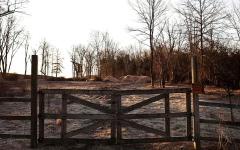 الصورة: ترامب يسعى إلى تخصيص قطعة أرض لإقامة مقبرة له ولعائلته