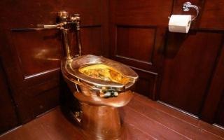 الصورة: 100  ألف جنيه إسترليني لمن يعثر على هذا المرحاض المسروق