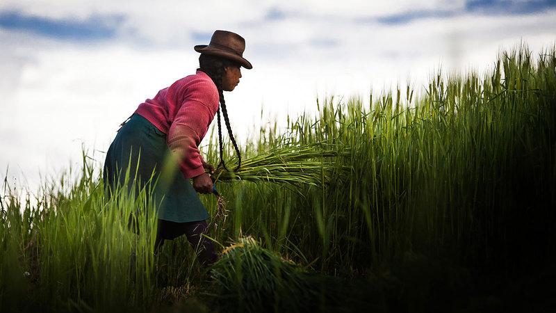 الفعالية الأبرز ضمن فعاليات الأسبوع هي «وعد الناس بالتأثير المناخي الإيجابي».  من المصدر