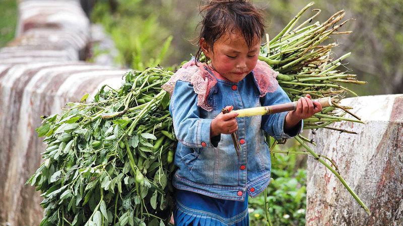 ارتفاع عدد الأطفال العاملين مشكلة تتفاقم في المجتمعات الفقيرة. أرشيفية