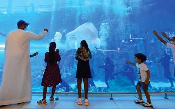 الصورة: أسئلة الزوّار.. ما أبرز المعالم السياحية المجانية والأنشطة الترفيهية في دبي؟