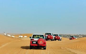 الصورة: ما أبرز النشاطات العائلية التي يمكن القيام بها في صحراء دبي؟