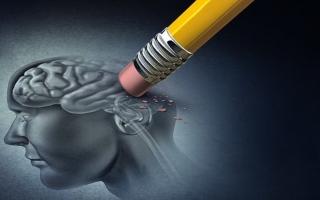 الصورة: علماء يكتشفون بروتين يمحي الذكريات السيئة