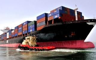 الصورة: «الاتحادي للتنافسية»: صادرات الإمارات غير النفطية تتجه إلى 234 سوقاً