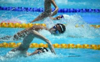 الصورة: طرح تذاكر مونديال أبوظبي للسباحة.. والأسعار تبدأ من 10 دراهم