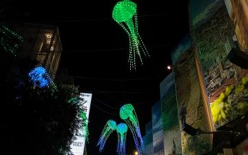 الصورة: بالصور.. «كاليدوسكوب».. مهرجان الأضواء يحوّل موقع «إكسبو» إلى قطعة من السماء