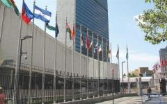 """الصورة: """"ورد مشبوه"""" أمام مبنى الأمم المتحدة !"""