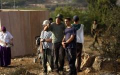 الصورة: مستوطنون يعتدون على قاطفي الزيتون شمال رام الله