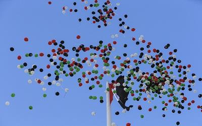 """حاكم الشارقة يفتتح """"جزيرة العلم"""" في الشارقة ويرفع علم الإمارات على ارتفاع 123 متراً"""