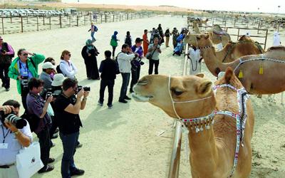 «المهرجان» يحظى باهتمام إعلامي على نطاق واسع. من المصدر