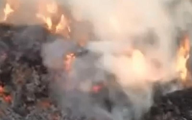 بالفيديو.. خليجي يحرق هندي في مزرعته لأنه رجل صالح!