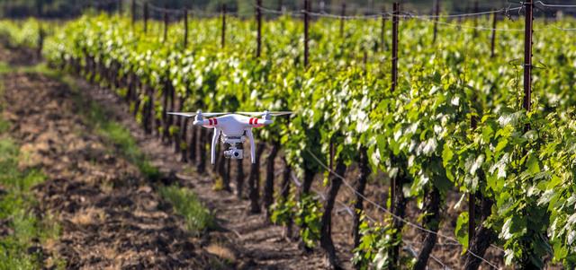 """الاستعداد لإطلاق مشروع لاستخدام طائرات """"درون"""" في المجال الزراعي بسيدي بوزيد"""