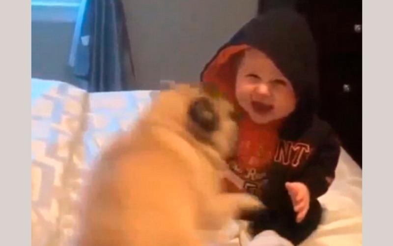 الصورة: بالفيديو.. ضحكة طفل بـ 7 ملايين