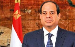 السيسي: كل الفرضيات محتملة في حادث الطائرة المصرية