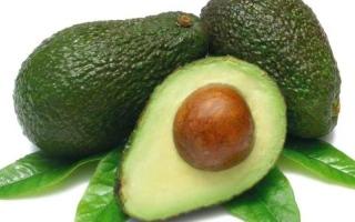 الأفوكادو.. ثمرة للمطبخ النباتي ولجمال البشرة