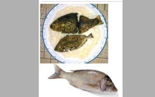 الصورة: سمك الشعري المقلي مع الأرز الأبيض