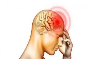 الصورة: دراسة تكشف عن جزء في مخ الإنسان مُعد لتعلم كيفية القراءة
