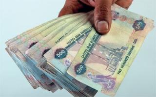 الصورة: «الربح السريع» يكلف خليجية مليوناً و100 ألف درهم