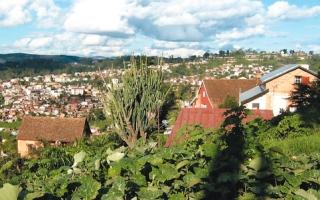 بنك نباتات بريطاني يحافظ على الأنواع النادرة في مدغشقر