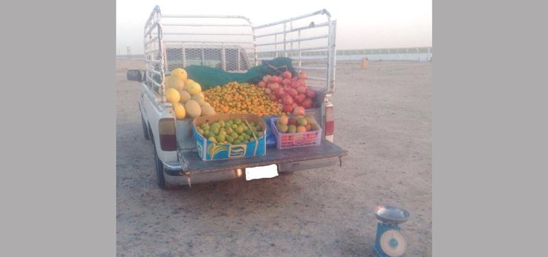 بلدية أبوظبي تنفذ حملة ضد الباعة الجائلين في الشهامة
