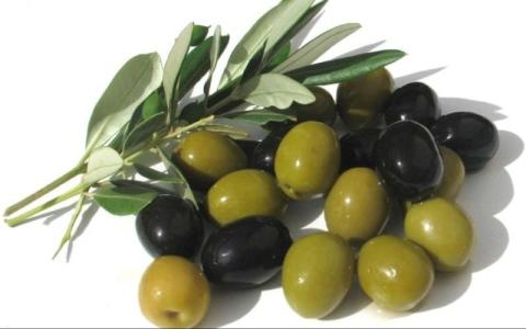 #سؤال ـ بسيط..  ماهو الفرق بين الزيتون الأسود والأخضر  ؟