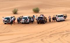 الصورة: سفاري دبي.. محاكاة لإرث البدو وتحدي الكثبان الرملية