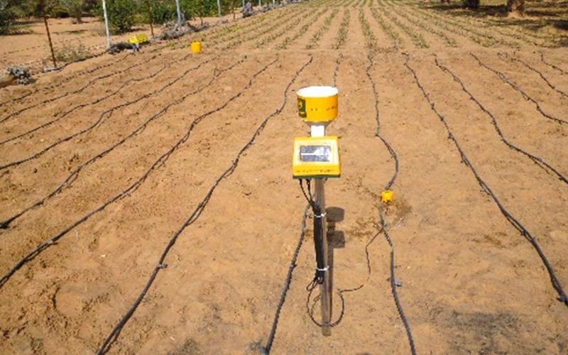 «الرقابة الغذائية» يوظف الطاقة المتجدّدة في الزراعة