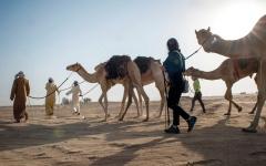 الصورة: رحلة الهجن تجدد استكشافها صحراء الإمارات