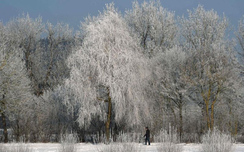 الثلوح تغطي مدناً حول العالم