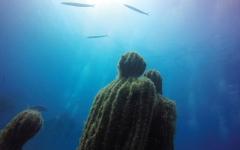الصورة: «أتلانتيكو».. متحف في أعماق البحر