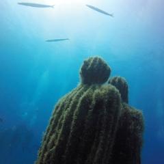 «أتلانتيكو».. متحف في أعماق البحر