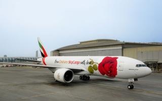 شاهد.. الإمارات للشحن الجوي تحتفي بعيد الحب بوردة على إحدى طائراتها