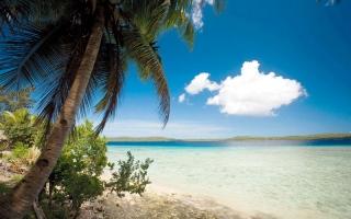 الصورة: جزر في المحيط الهادي تحظر استيراد الأطعمة السريعة
