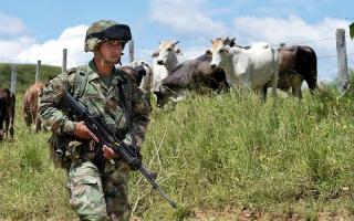 تصاعد أعداد القتلى على أيدي العصابات في كولومبيا