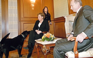 بوتين يداعب حصاناً جديداً ويحتضن «كوالا» ويقبّل سمكة
