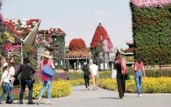 دبي.. نزهات وحدائق ترفيهية للأنشطة العائلية