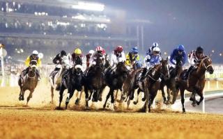 بالفيديو.. أبرز المرشحين للفوز بكأس دبي العالمي للخيول