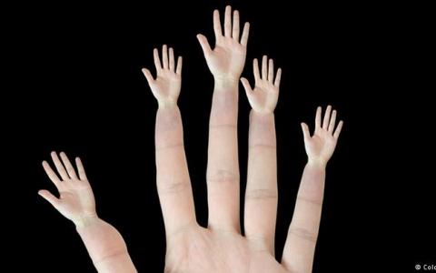 #سؤال_بسيط... لماذا تختلف اصابع اليد ..وماسبب وجود البصمات ؟
