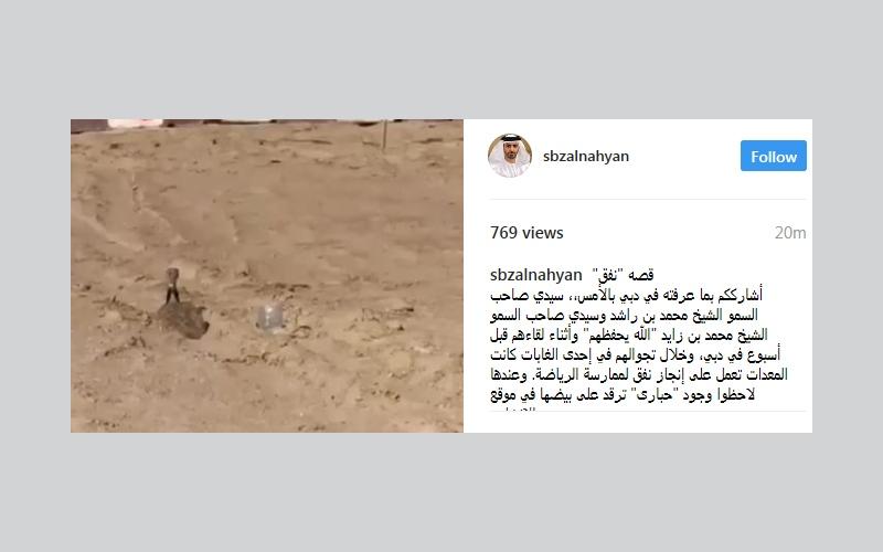 """الصورة: بالفيديو.. سيف بن زايد يشارك متابعيه على """"انستغرام"""" """"قصة نفق"""""""
