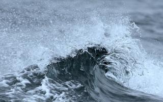 الصورة: تحذير لمرتادي البحر
