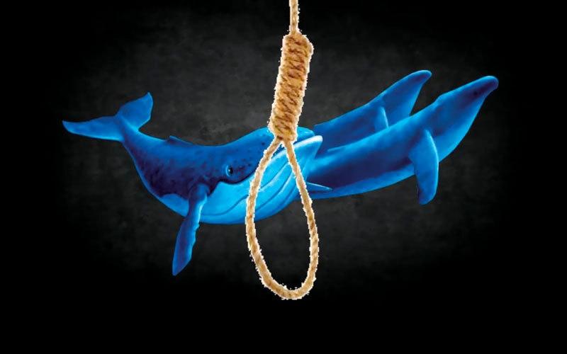 «تحدي الحوت الأزرق».. رحلة  إلى الموت تستغرق 50 يوماً